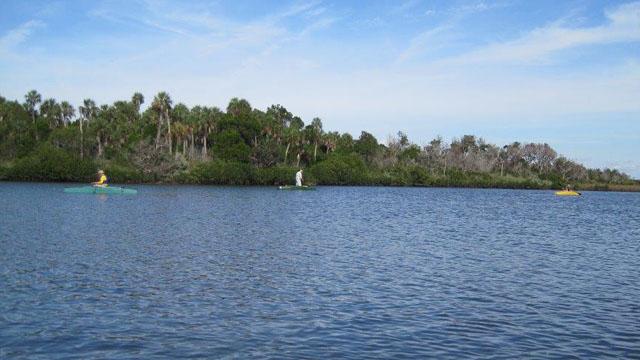 3-kayak-anglers-fishing-the-mangroves-at-ozello