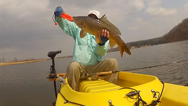 carp-caught-on-fly-in-stand-up-fishing-kayak