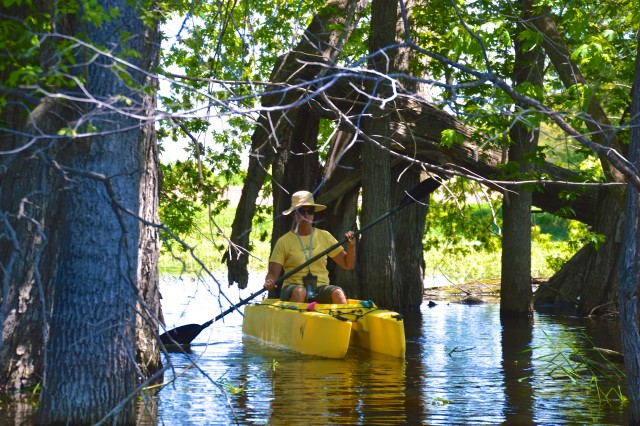 jeanne-paddling-her-kayak-in-the-flooded-forst-among-the-trees