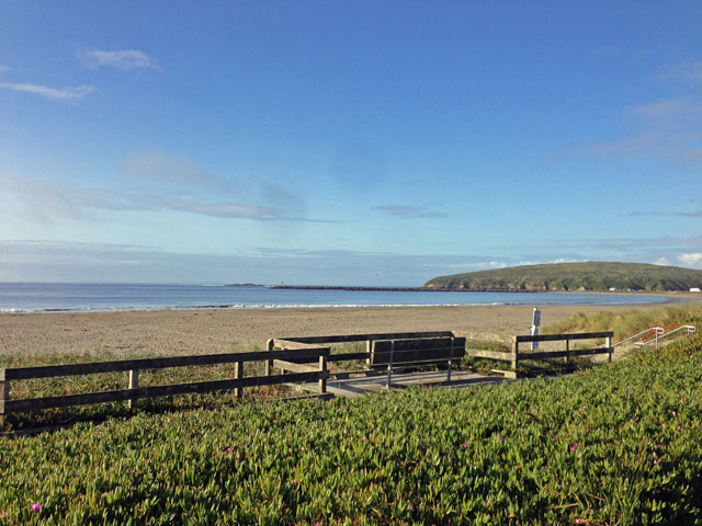 scenic-view-of-beach-sf-bay-ca