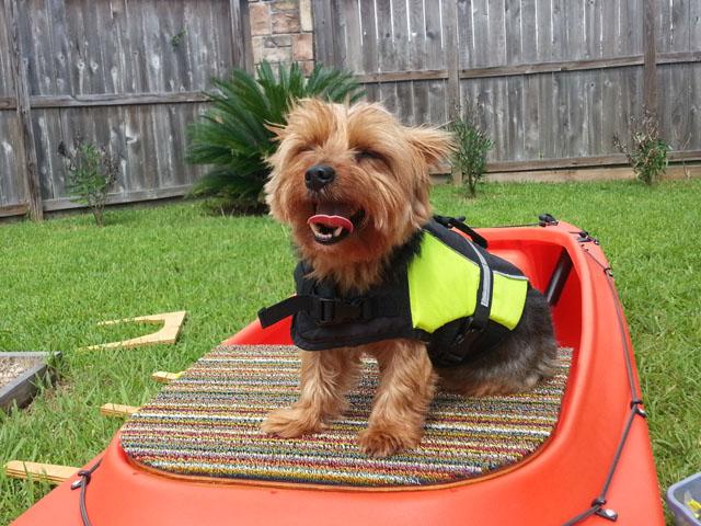 dog-platform-for-fishing-kayak-TX
