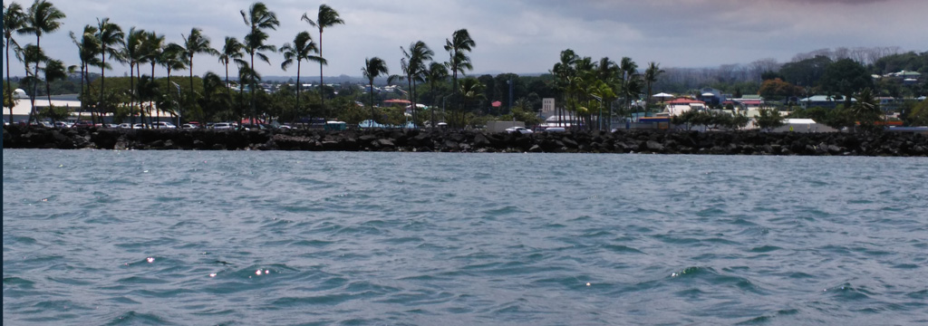 view of the beach Hilo bay