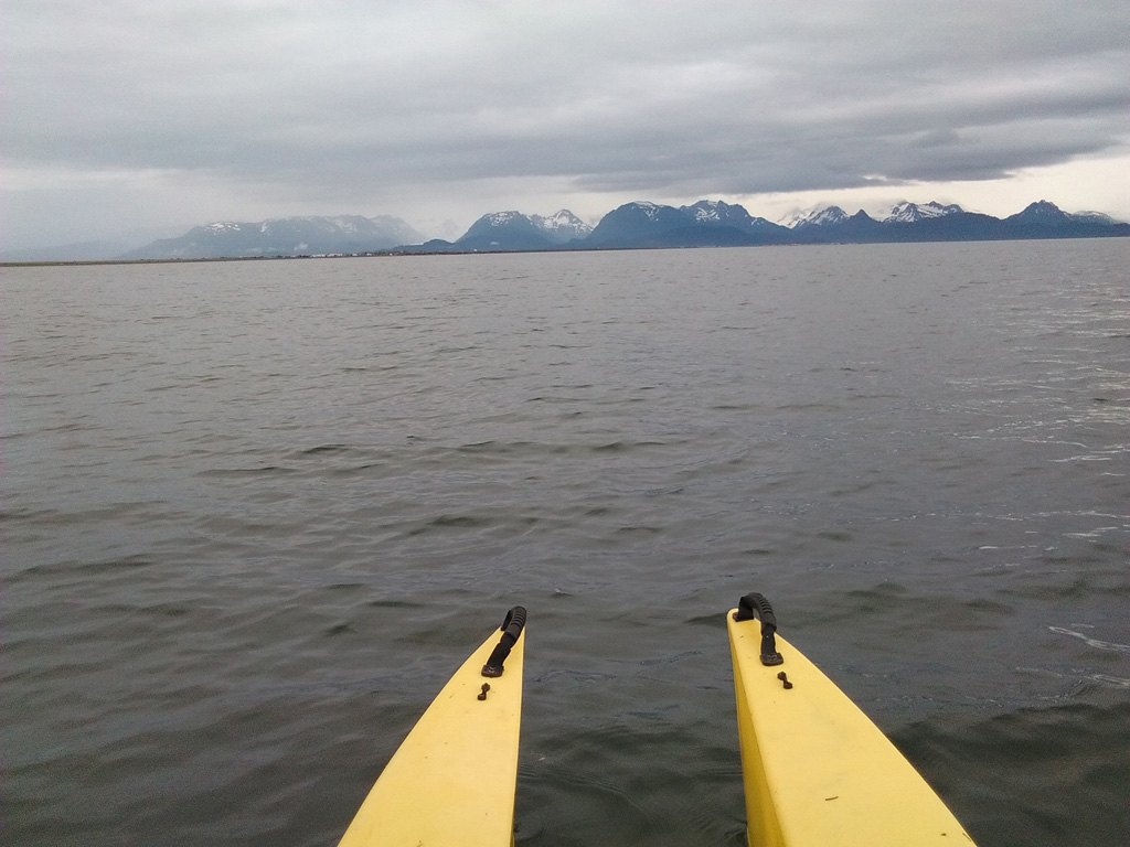 Grewingk Glacier and the Harding Ice Field viewed from the kayak 1024