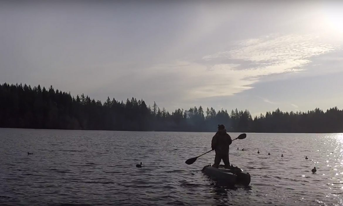 Hunting ducks and being robbed by eagles