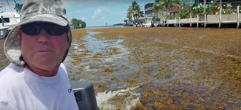 Driving my Wavewalk S4 through Sargassum seaweed