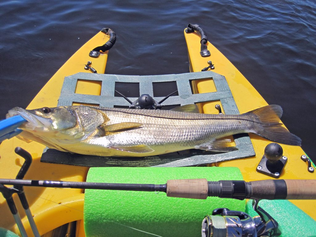 snook caught in Wavewalk 500 kayak