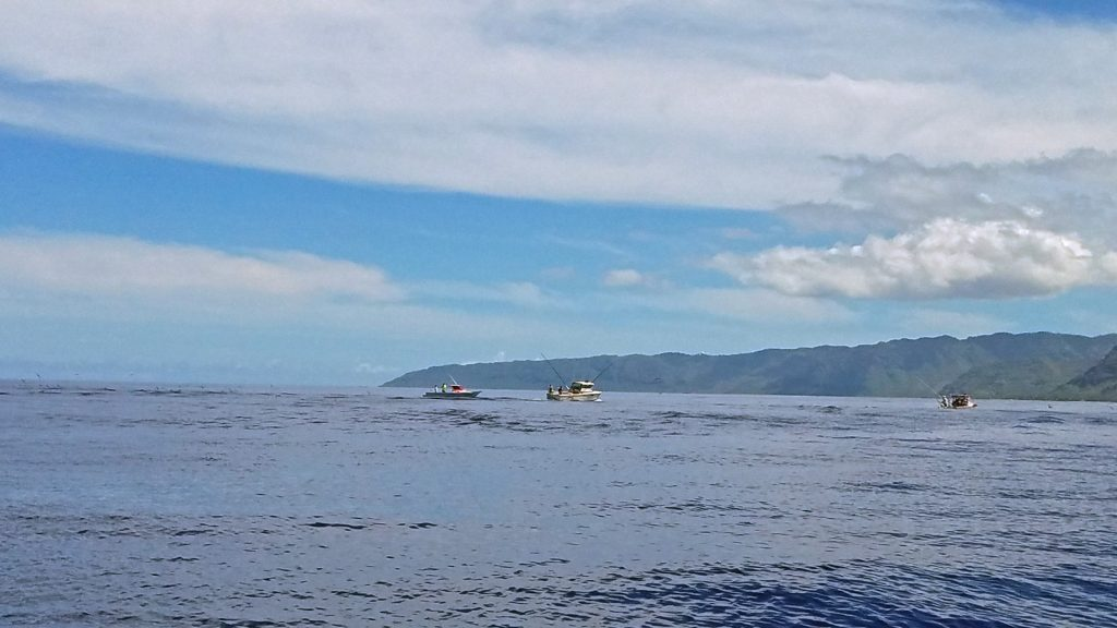 fishing boats offshore