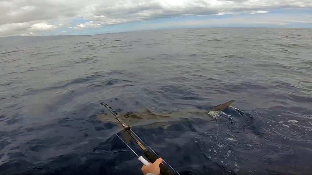 Wavewlk S4 mpotor kayak fishing for shark in the ocean offshore - Hawaii