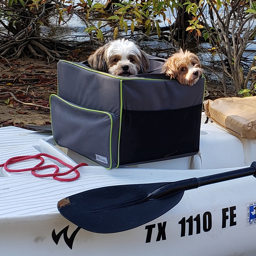 Two havanese dogs in Cartop skiff